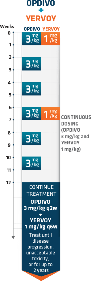 Checkmate 227 dosing schedule