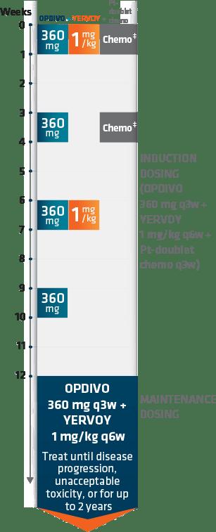 Checkmate 9LA dosing schedule